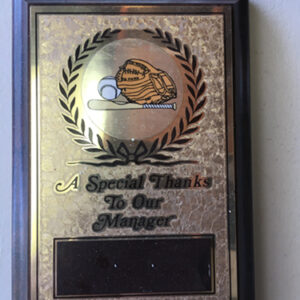 Special Thanks_Baseball PlaqueX